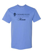 Mom Short Sleeved Tee in Chambray and Flo Blue