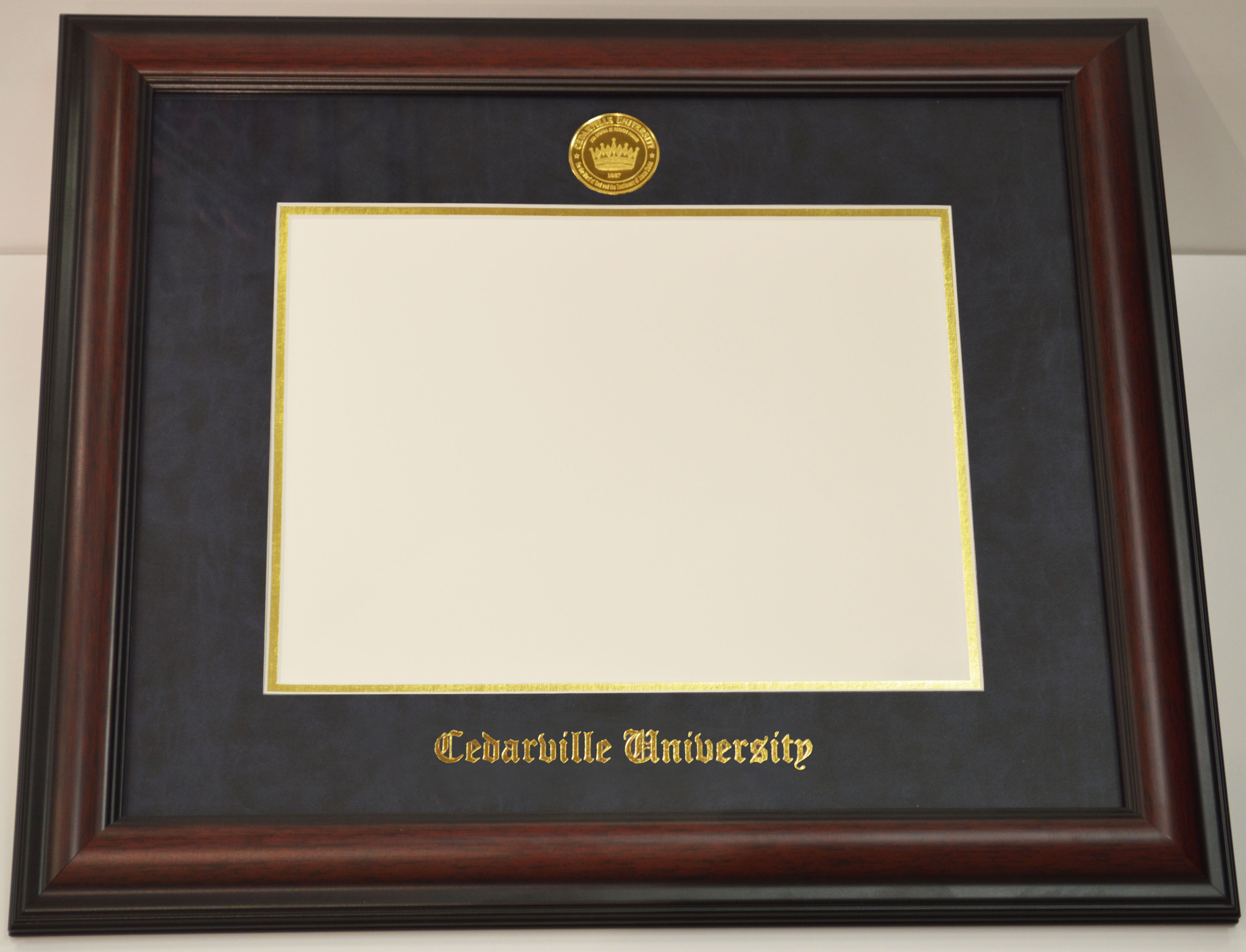Dorable Diploma Frame With Picture Frieze - Framed Art Ideas ...